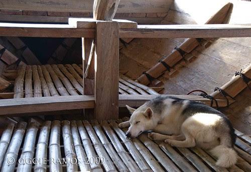balangay bamboo floor