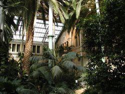 The winter Garden at Glyptoteket