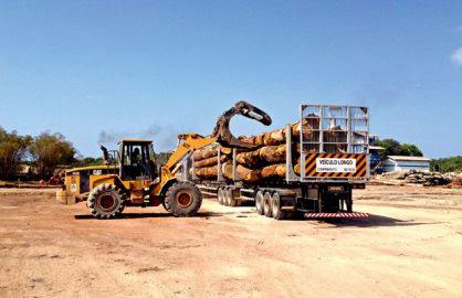 Estrutura: para obter certificação, as empresas que exploram florestas nativas precisam manter serrarias e mão de obra local, como forma de desenvolver a região na qual operam