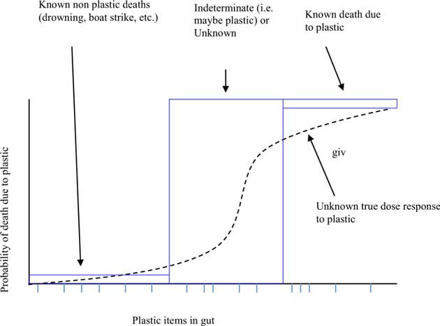 Conceptual framework for estimating the probability of death due to plastic debris ingestion.