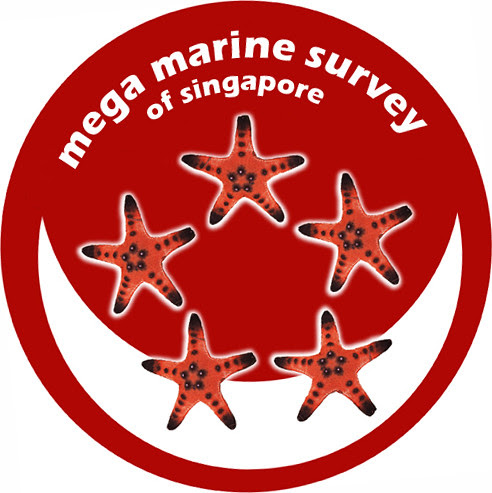 Mega Marine Survey of Singapore