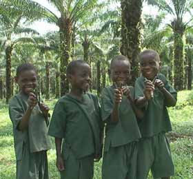 Enfants Pygmées Bagyeli
