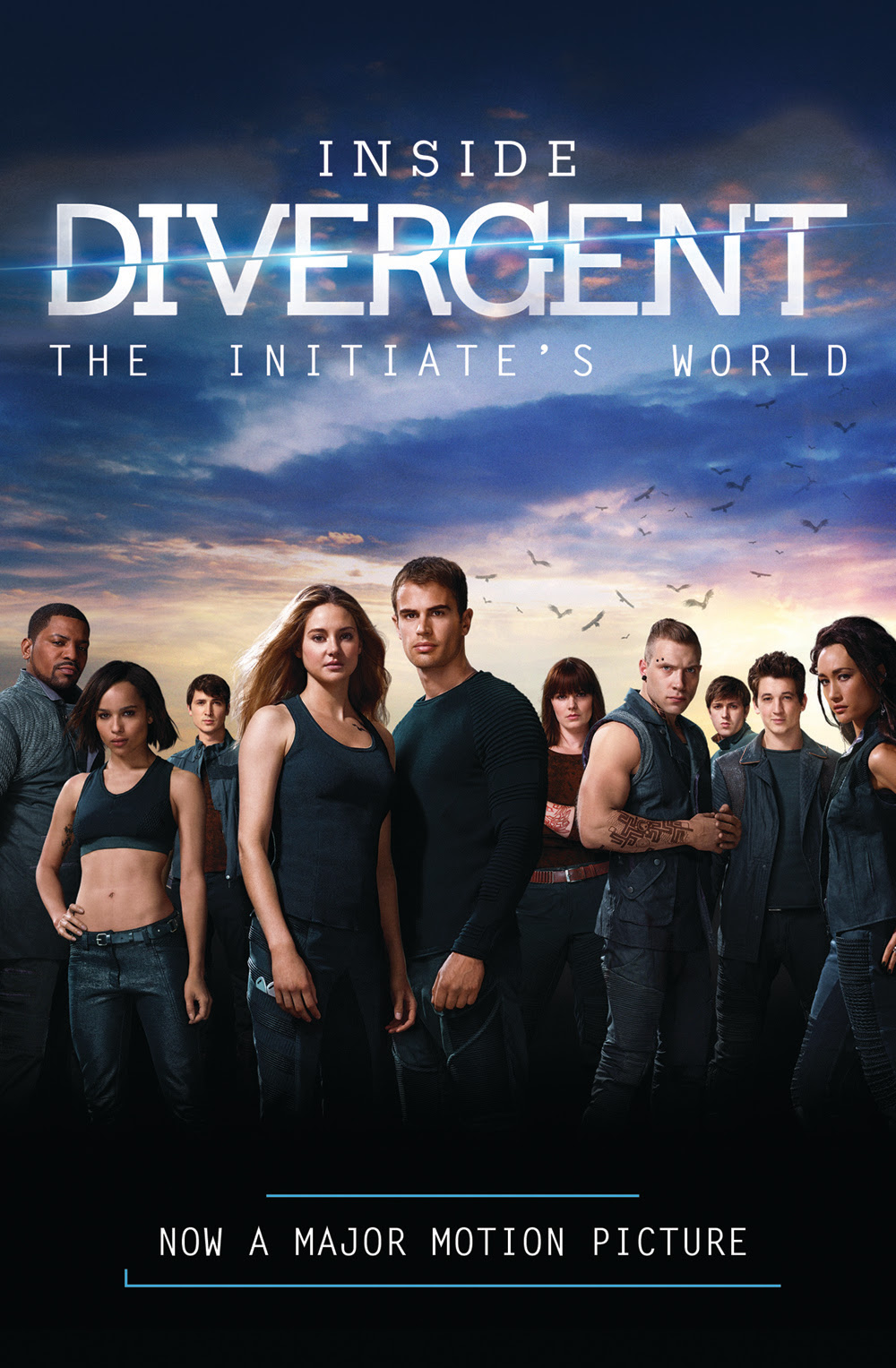 http://iamdivergentdotcom.files.wordpress.com/2013/11/image16.jpg