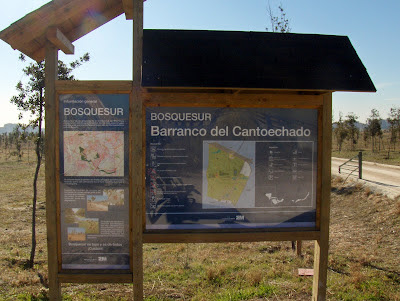 Lago Mari-Pascuala