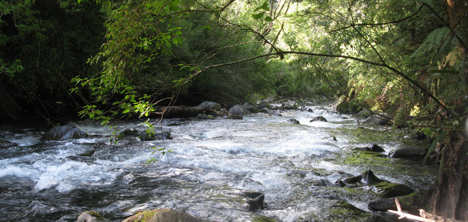 wild river in Hronopieren
