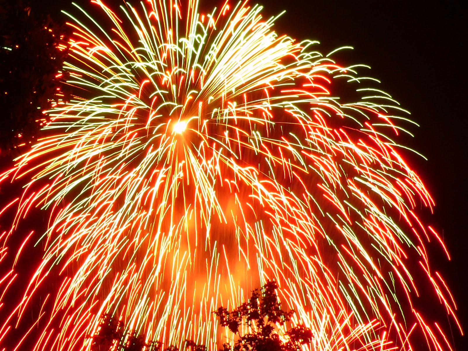 http://doriselisabustamante.files.wordpress.com/2008/12/fuegos-artificiales.jpg
