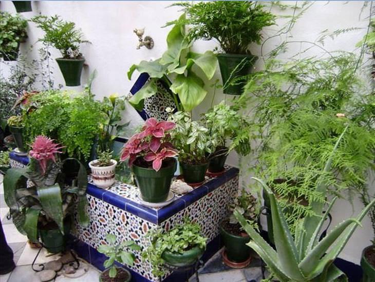 conheça córdoba, a cidade das flores na espanha