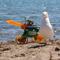 robotmissions_seagull