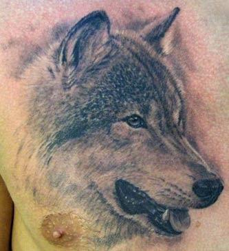 Realistic Chest Wolf Tattoo Design Of Tattoosdesign Of Tattoos