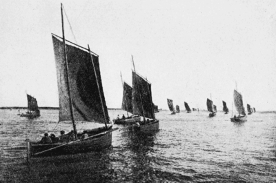 PSM V59 D559 Sardine boats sailing for the fishing grounds.png