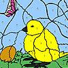 Civciv Ve Yumurta Boyama Oyunu