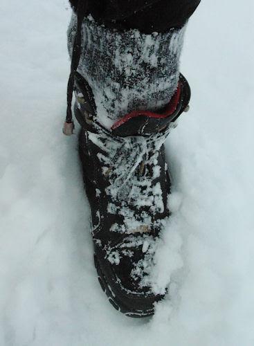 snow shoe :: snøsko