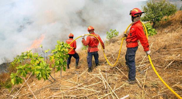 """Estrutura dos bombeiros e da Proteção Civil """"tem que ser refundada"""""""
