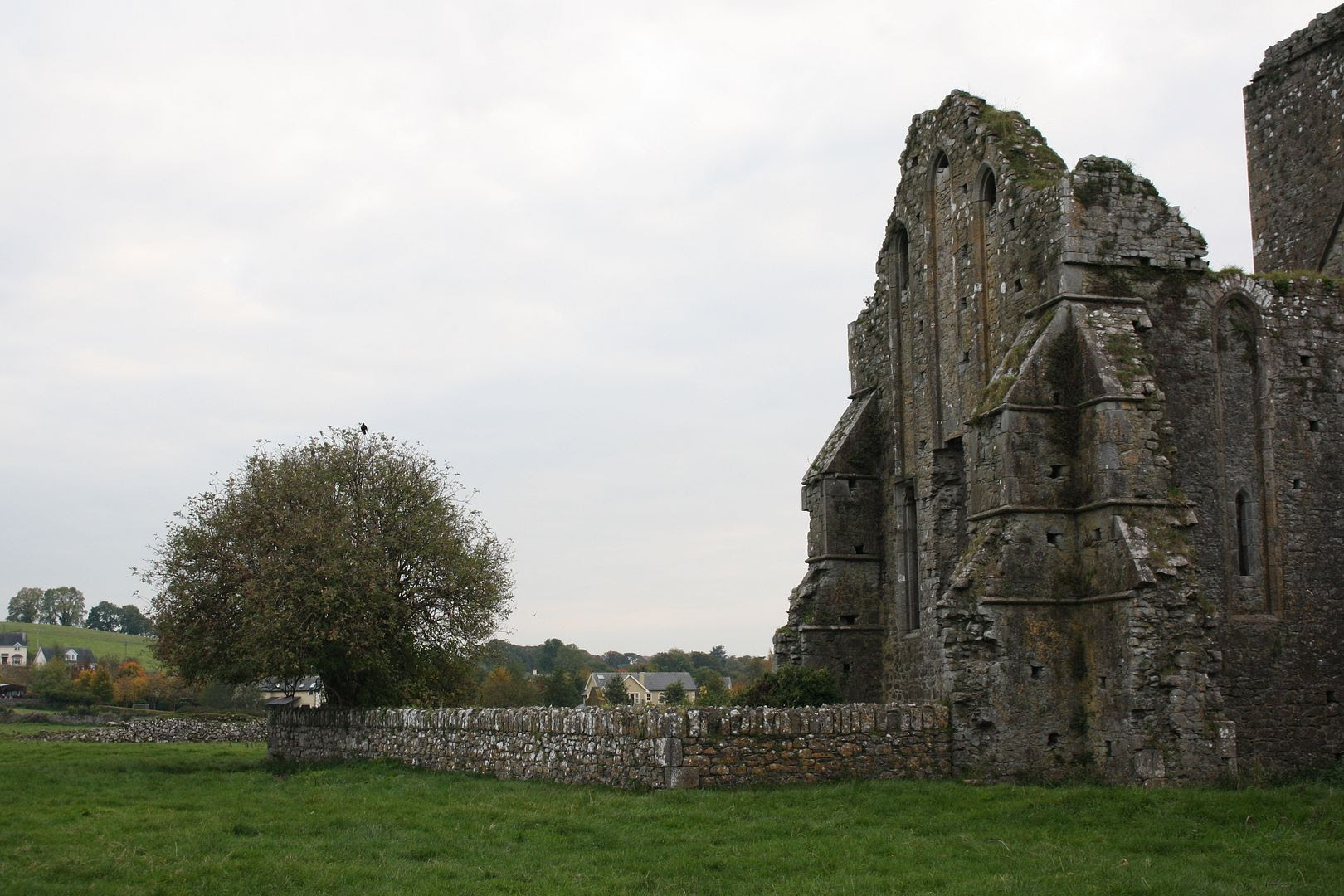 Hore Abbey, Cashel, Ireland photo IMG_3740_zpsfj2x4h6n.jpg