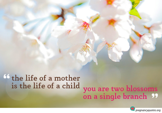 The Life Of A Mother Pregnancy Quote Two Blossoms One Branch