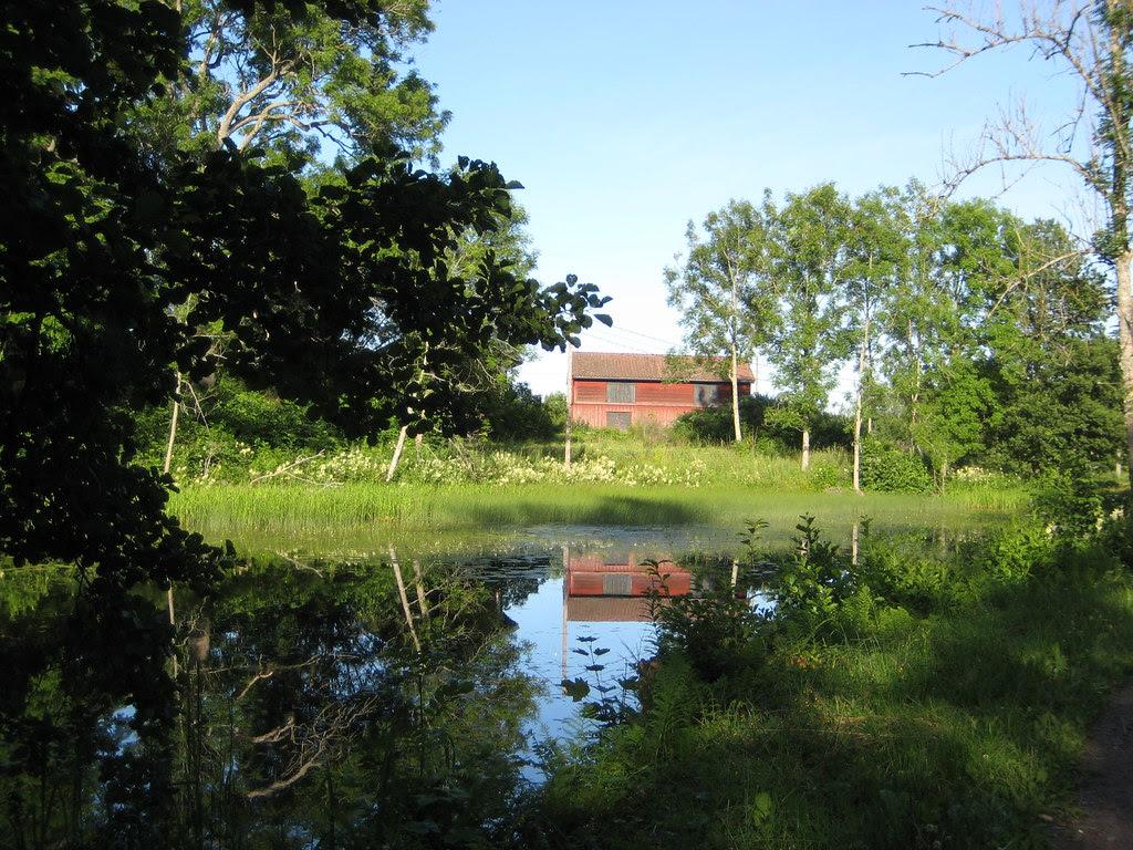 Cottage de verano