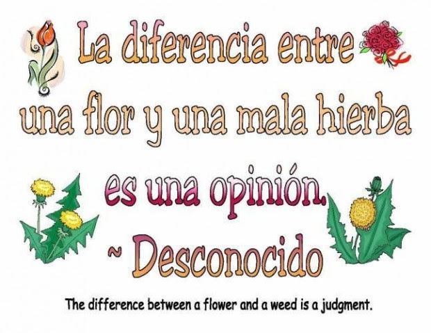 Cute short love quotes in spanish - Collection Of ...