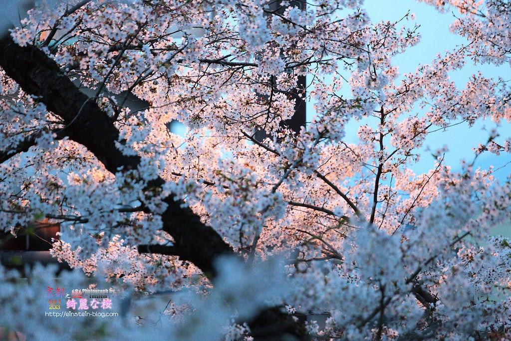 2013-04-04-17h22m16IMG_2088