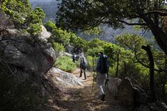 Long Group Hikes Ikaria May 2012 9