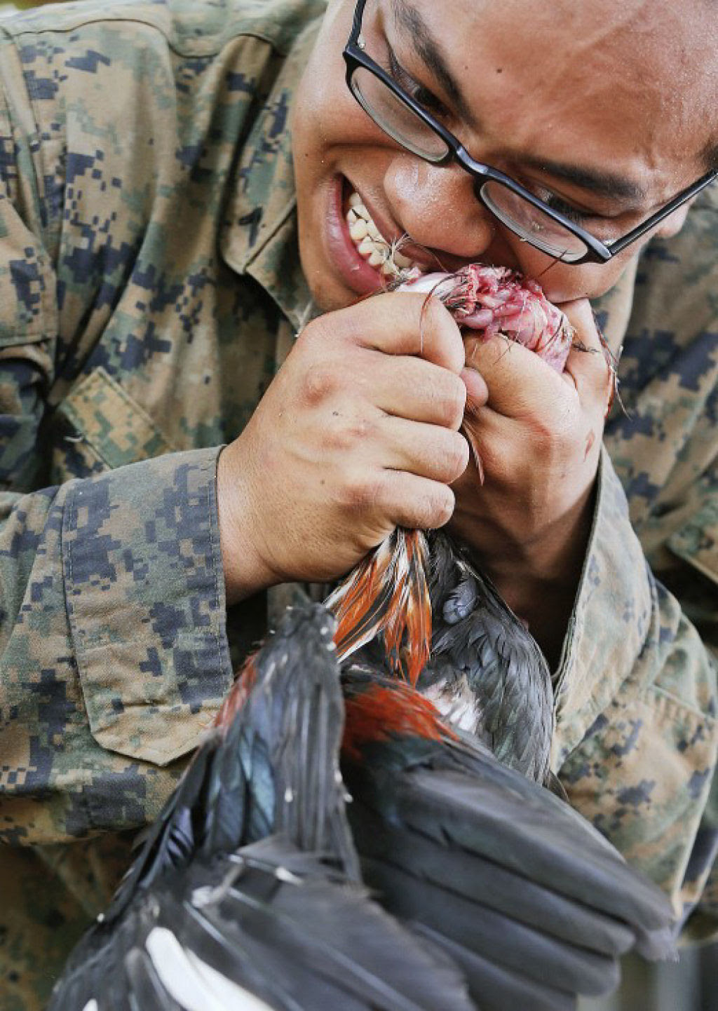 Cobra Gold 2013 - Militares sobrevivem com sangue de cobra na selva tailandesa 13