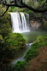 IMG_6250_Dangar_Falls