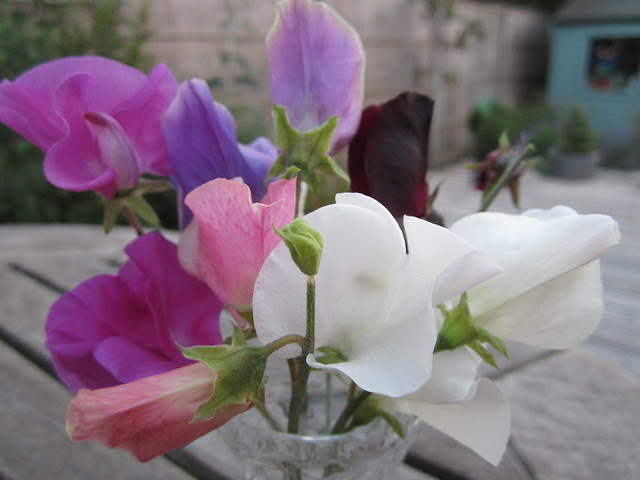 summer in a vase (4)