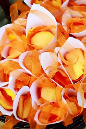 orange weddings One&Only Palmilla Destination Wedding