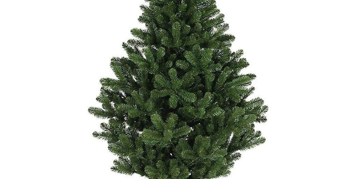 How to Keep Your Christmas Tree Alive Throughout the ...