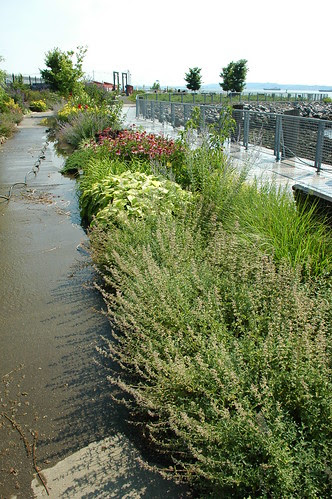 Pier 44 Waterfront Garden