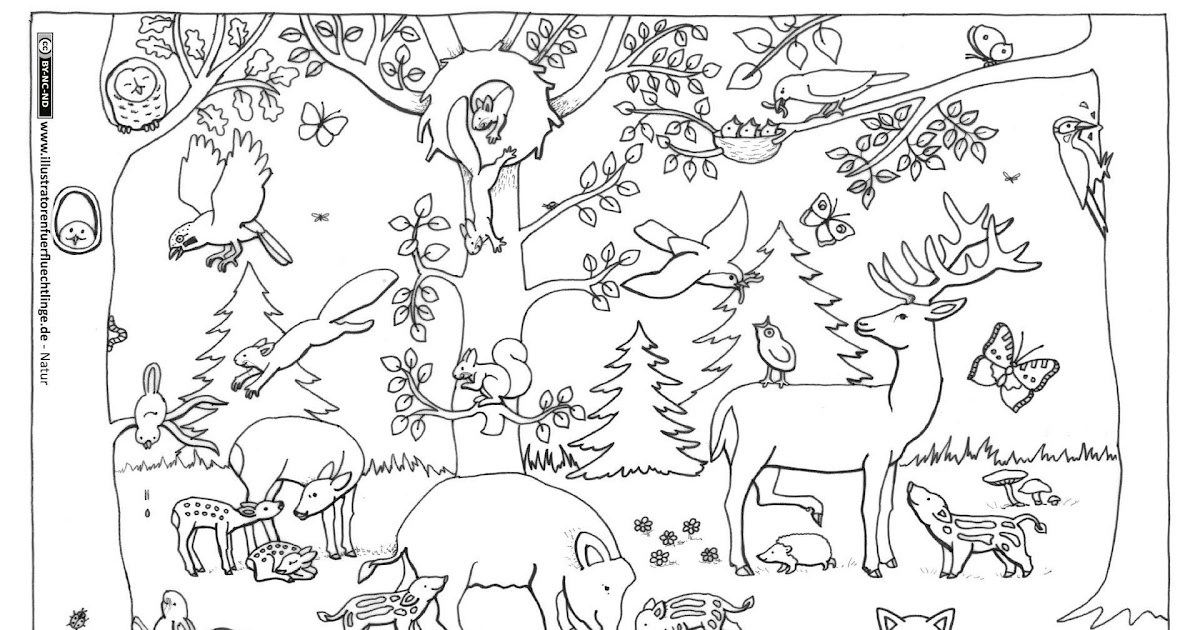 kindergarten winterwald tiere im winter ausmalbild