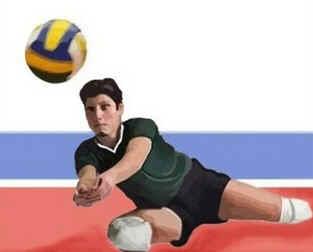 Voleibol Sentado