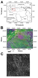 Thumbnail of A) Location (red box) of outbreak of Mayaro virus, La Estación village, municipality of Ospino, Portuguesa State, Venezuela, 2010. Scale bar is at the lower left. B) Landsat image of eastern Andes and plains (Llanos) showing topography in Portuguesa State, Ospino, and La Estación, 28.5-m scale (http://glcf.umd.edu/data/landsat/). C) Spot image TM-5, 2.5-m scale, from La Estación, showing forest areas surrounding the urban–rural village (http://www.fii.gob.ve/proyectsFlags.html?value