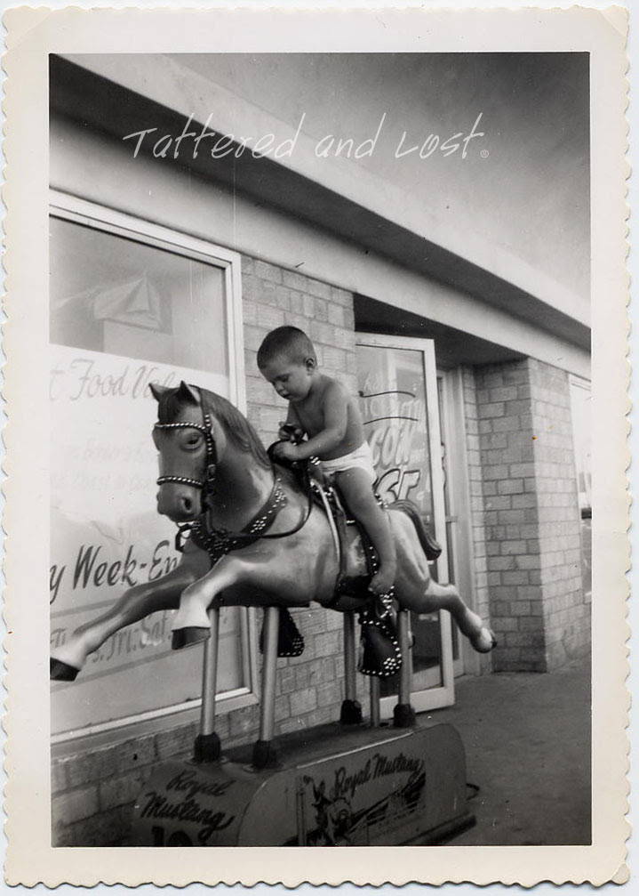 Boy on Royal Mustang_tatteredandlost