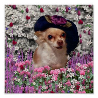 Chi Chi in Flowers - Chihuahua Puppy in Cute Hat print