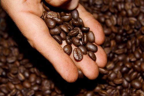 Descubriendo la Ruta del Café, Granos de Café Tostado, Triángulo del Café