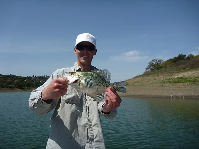 California fishing blog anderson lake bass and crappie for Bass lake ca fishing