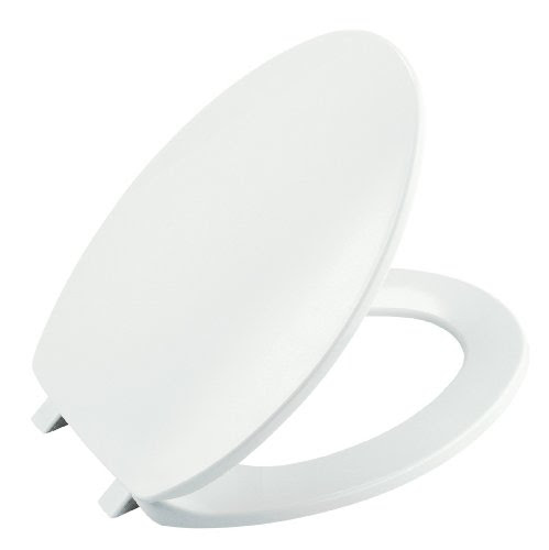 Elongated Toilet Seat 2011 01