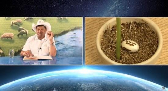 MPF quer que pastor Valdemiro Santiago pague R$ 300 mil de indenização por venda de sementes de feijão com a falsa promessa que curariam covid-19