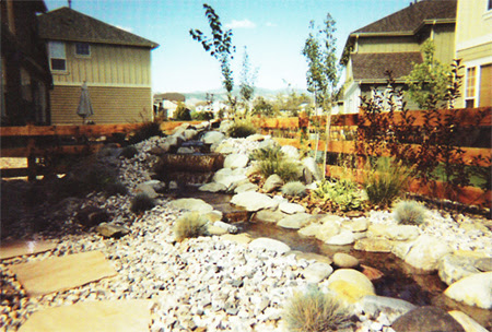 Denver Landscaping Xeriscaping