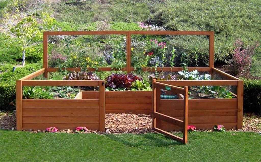 5 Amazing Small Yard Garden Ideas - NLC Loans