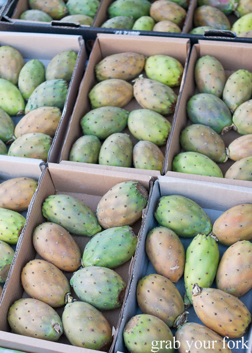 Prickly pears at Frenchs Forest Organic Food Market