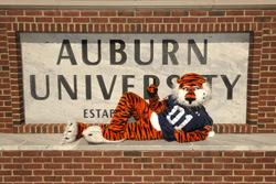 Welcome to Auburn!