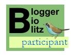 Blogger BioBlitz participant logo, words only