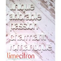 Acrylique - minis mots St-Valentin BLANC