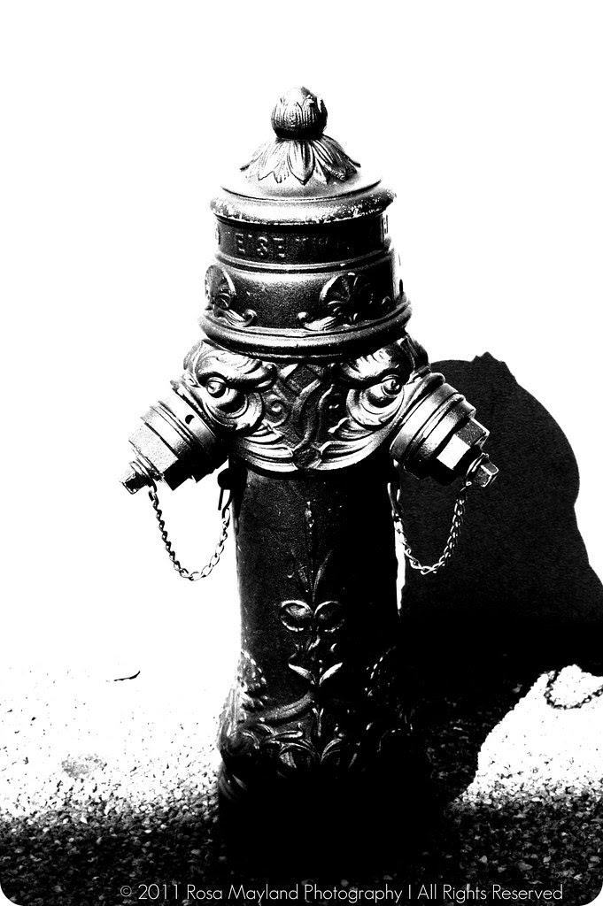 Hydrante 1 2 bis