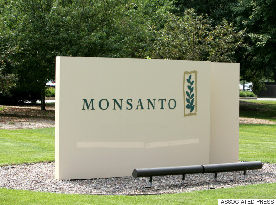 monsanto syngenta