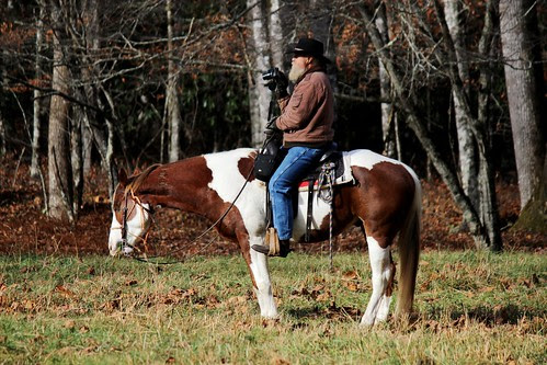 IMG_3211_Elk_Watcher_on_Horseback_in_Cataloochee