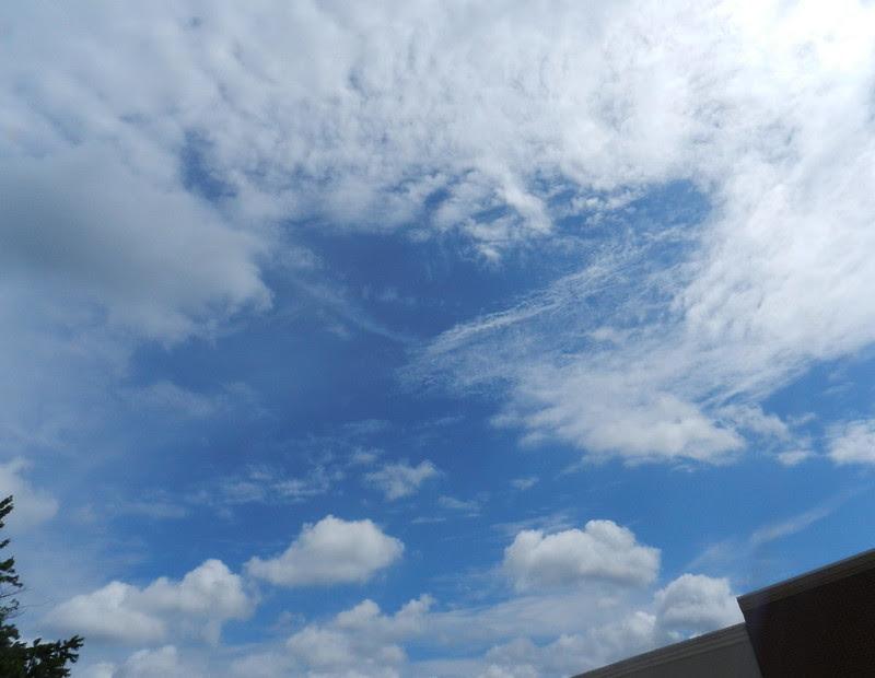 skywatfcDSCN1598