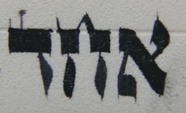Aviel's Torah