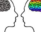 Dos sexos, dos cerebros